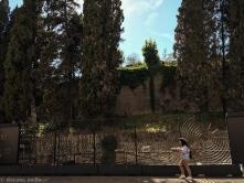 O que se pode ver ainda, são as velhas paredes e os altos pinheiros. . foto: © dayana mello