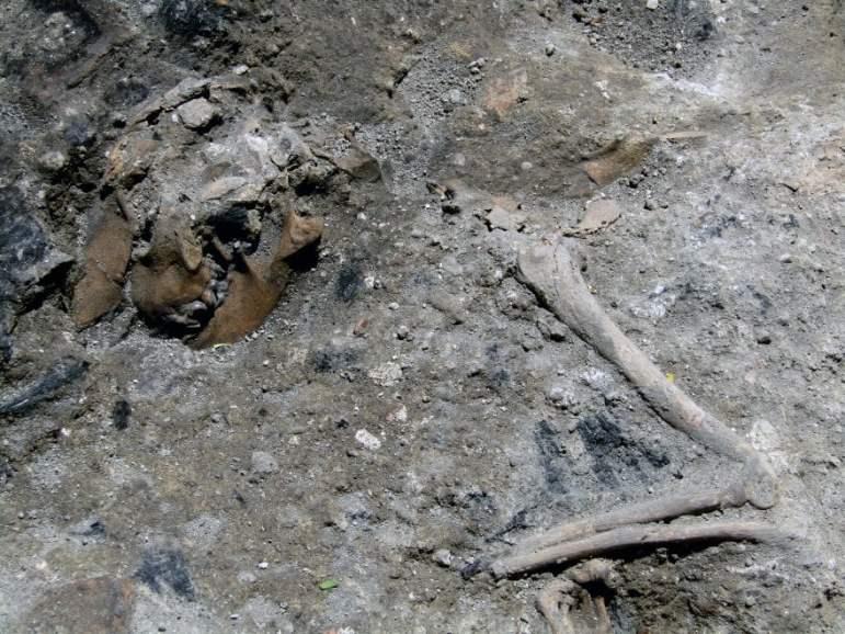 Supõe-se que o cachorro fora impedido de fugir das chamas, devido ao desabamento do teto. Na foto, podem ser vistos os restos mortais do animal. Foto: La Repubblica